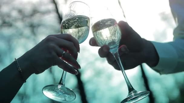 Braut und Bräutigam halten Champagner Gläser video Hd