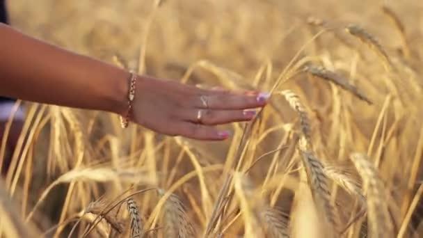 Braut und Bräutigam in einem Weizenfeld Hand in Hand durch die Ähren