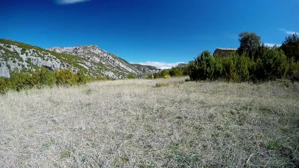 young woman running away on mountain trail in alpine pasture