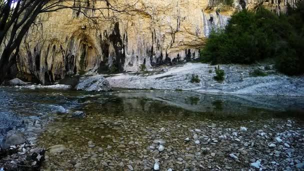 Malé a klidné creek v lese a vápencové skály