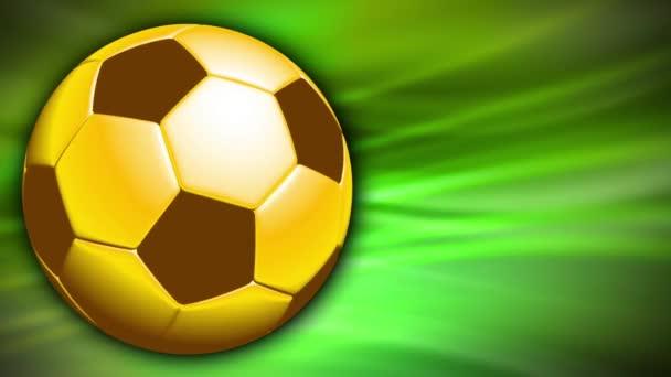 Sport Labdarúgás labdarúgó 0007h