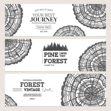 Pine forest banner collection