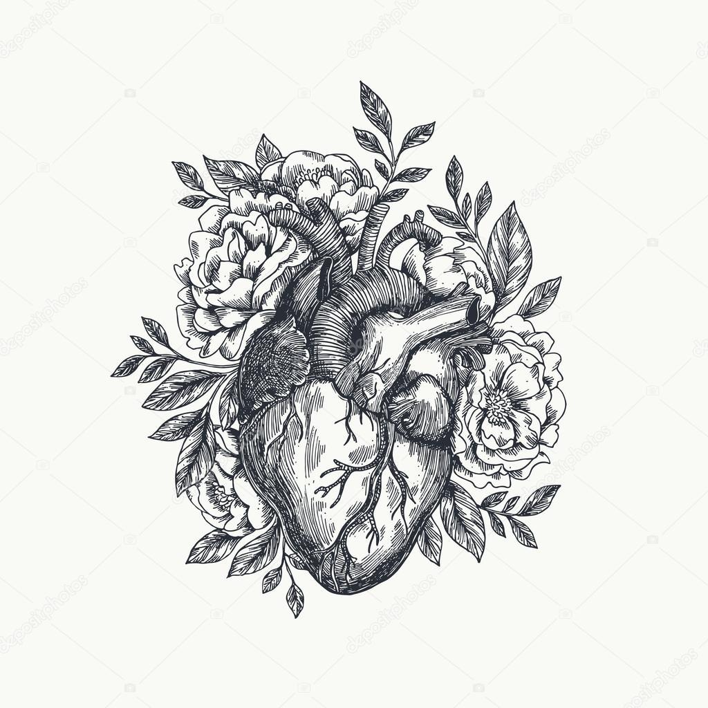 Tarjeta del día de San Valentín. Corazón anatomía — Vector de stock ...