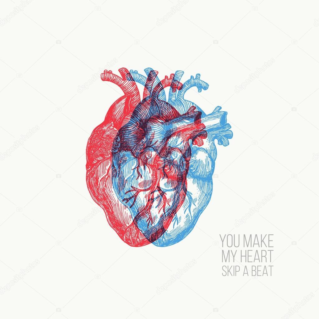 Tarjeta del día de San Valentín. Corazón anatomía — Archivo Imágenes ...