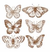 Fotografie Vintage Butterflies Texture