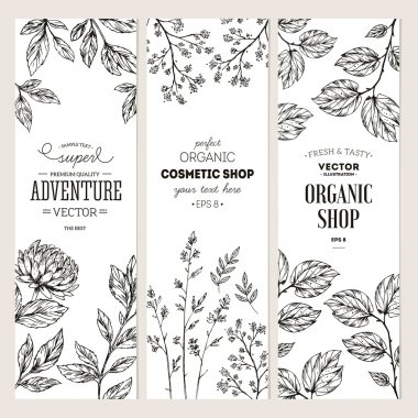 Botanical banner collection. Organic cosmetic. Vector illustration stock vector