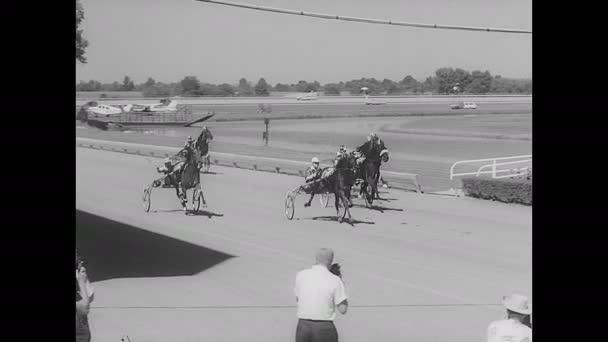 60. léta: Koně na dostizích. Diváci na tribuně. Fotografové fotí. Kůň č. 7 zdobený květinami.