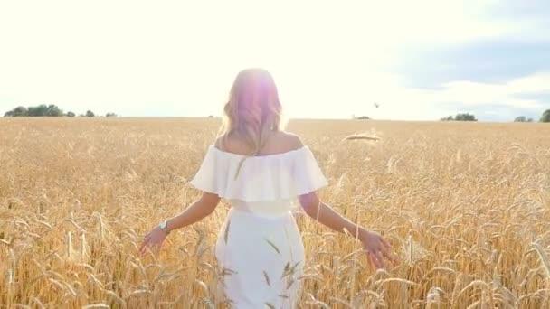 Krásná mladá žena v bílých šatech na pšeničné pole