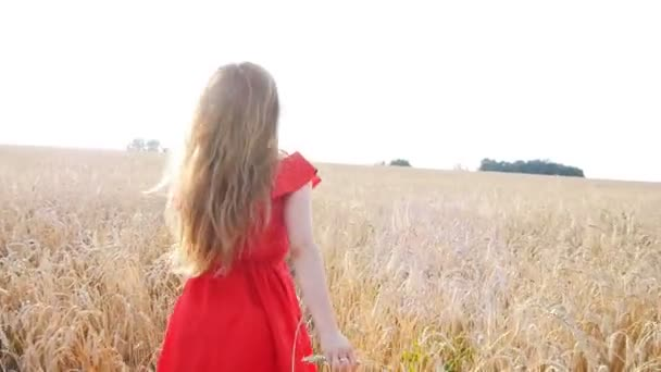 beautiful young woman run away in yellow wheat field