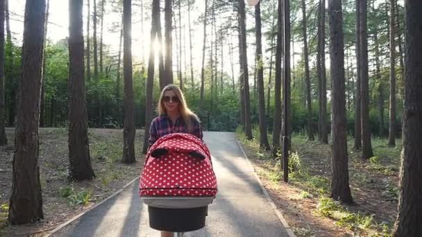 Šťastná mladá matka s dítětem v buggy procházky v parku