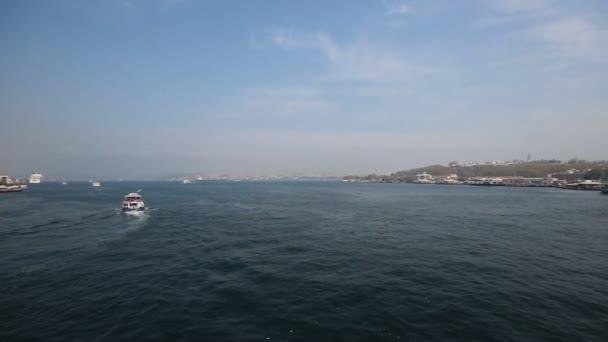 tenger sirály és a golden tájkép horn, Isztambul. Törökország