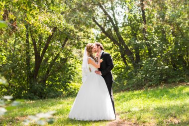 Beautiful wedding couple in park. They kiss and hug each other