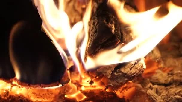Plameny a ohnivé uhlíky