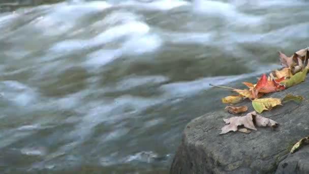 Šplouchání vody mechu, které horniny