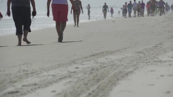 Scene of people enjoying a Florida beach