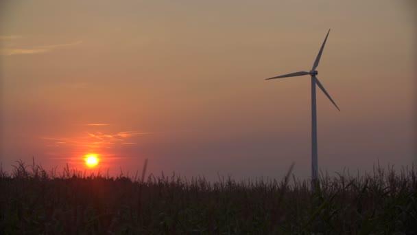 Turbine di vento al tramonto, verde energia.