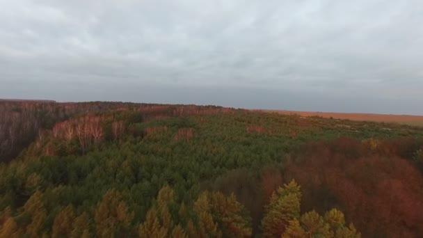 Fly přes les na podzim, Ukrajina