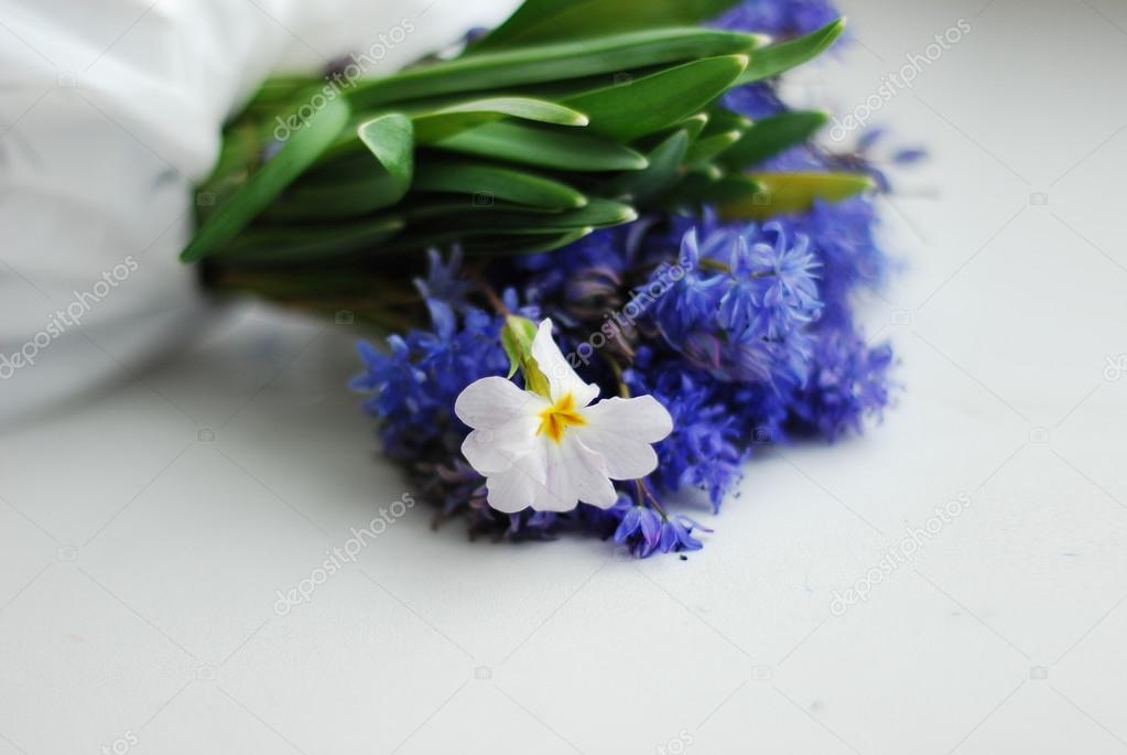 Blumenstrauß aus blauen Blumen und weiße Blume — Stockfoto ...