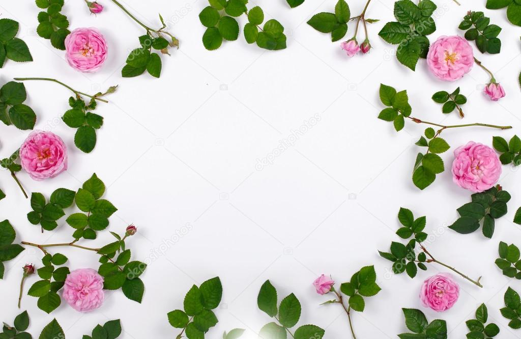 Frame with roses and leaves roses