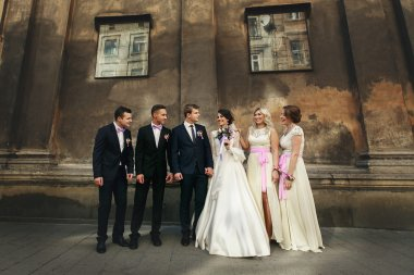 Newlyweds, bridesmaids and groomsmen