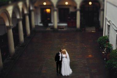 Romantic newlywed couple posing