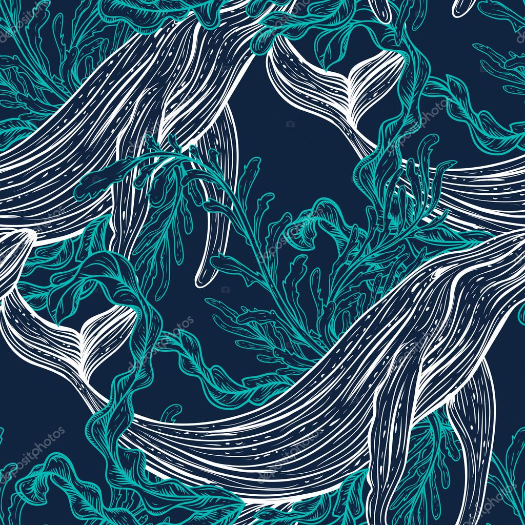 Seamless pattern with whale, marine plants and seaweeds.Vintage set of black and white hand drawn marine life.Isolated vector illustration in line art style.Design for summer beach, decorations.