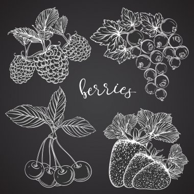 Collection of berries on chalkboard. Strawberries, cherries, currants, raspberries. Isolated elements. Vintage black and white hand drawn vector illustration