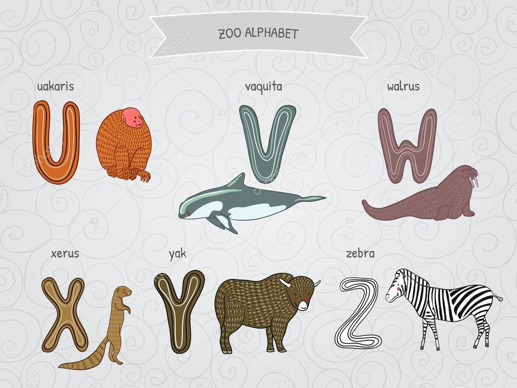 Cute Cartoon Funny Zoo Alphabet In Vector U V W X Y Z Letters