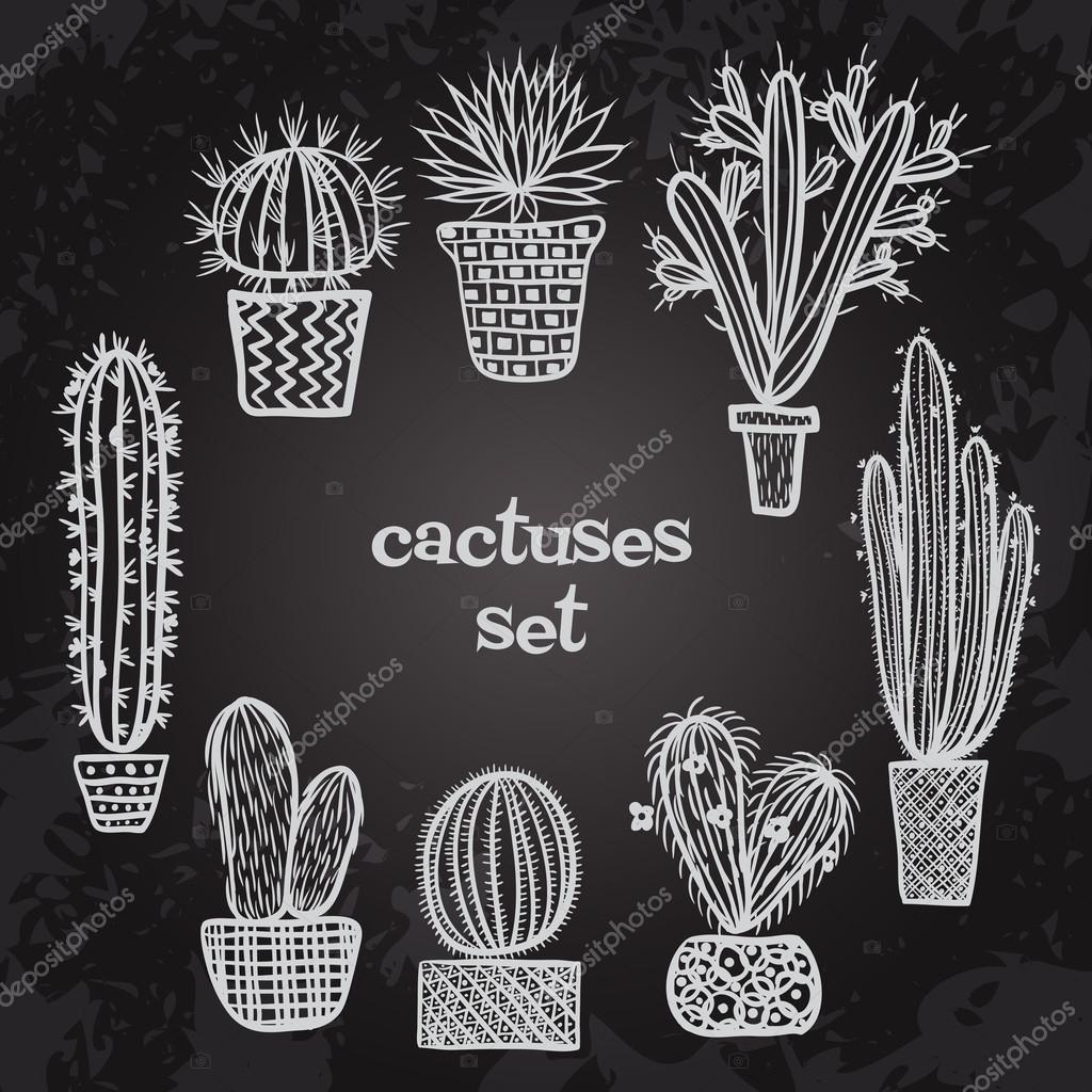 Flat chalk board black and white illustration of succulent plants and cactuses in pots. Vector botanical graphic set with cute florals.