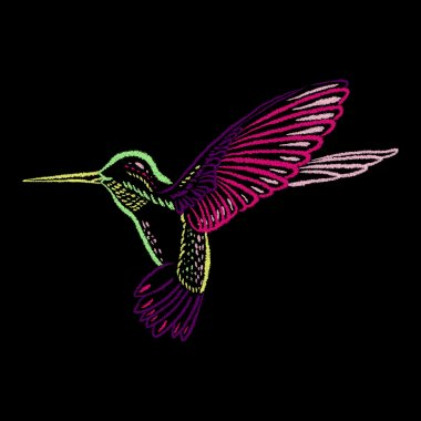 Colorful Hummingbird on blackboard hand-drawn with color chalks. Vector illustration.