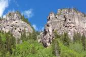 High mountains with forest in Telluride, Colorado.
