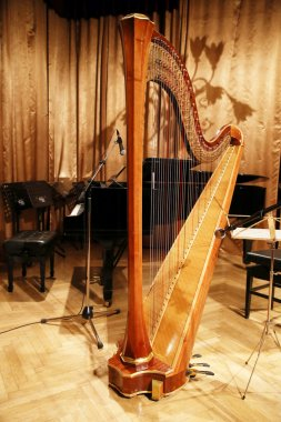 Beautiful golden harp in the auditorium before concert