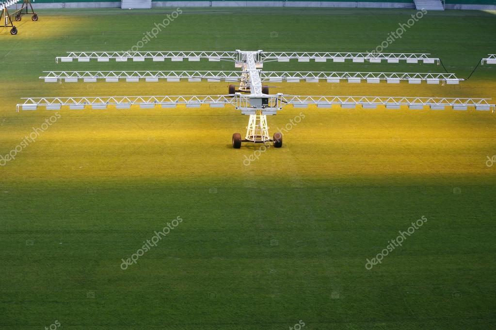 Sistema di illuminazione per la coltivazione di erba e prato allo