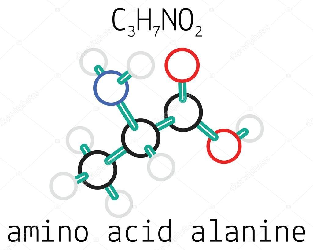 alanine aminozuur