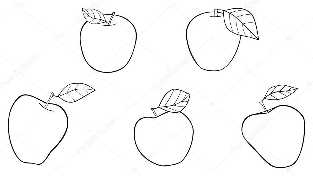 Precioso jardín - cinco mejores manzanas con hojas — Archivo ...