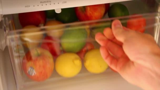 Kühlschrank Schublade : Obst schublade in kühlschrank u2014 stockvideo © jakerbreaker #70568061