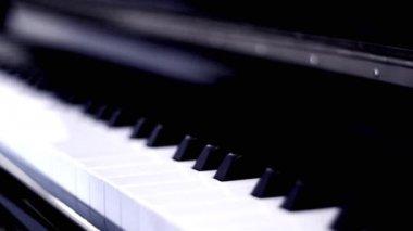 Орган пяїно фото відео — 1