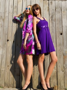Two vivacious beautiful young women in trendy short summer dresses posing, full length outdoor portrait,at wooden wall background.Close up portrait of two pretty hipster sisters. stock vector