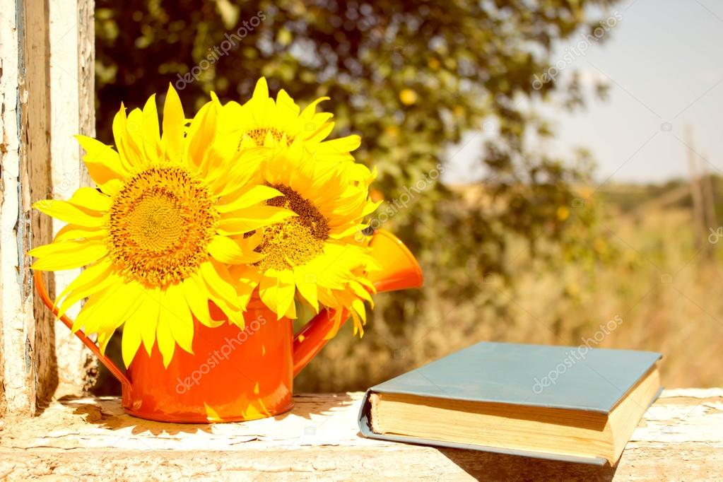 Books, reading, sunflower