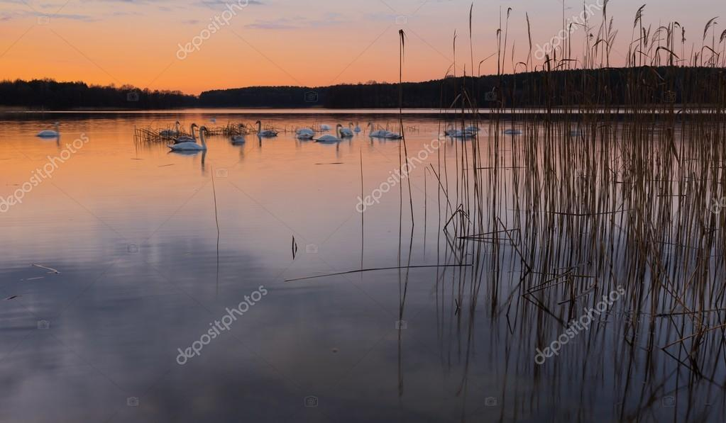 Lake landscape after sunset