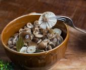 Fotografie Marinierten Honig Pilz in braun Schüssel auf Holztisch