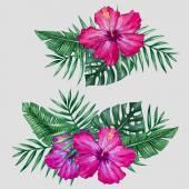 Akvarell trópusi virágok