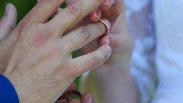 nevěsta a ženich nosí snubní prsteny
