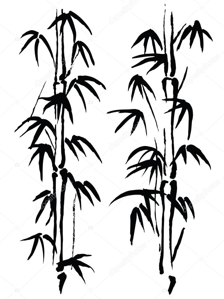 Black and white illustration. Bamboo