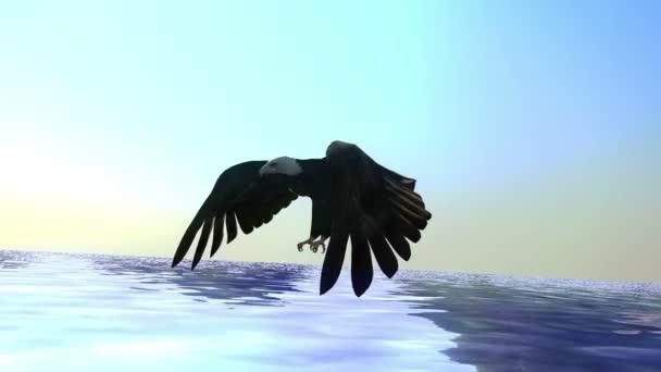 weißköpfiger seeadler