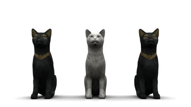 három macska