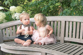 Baby boy and girl in formal dress sitting on wooden bench in a beautiful garden