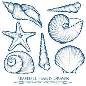 Muschel, Muschel, Seestern Natur Ozean aquatische Unterwasser-Vektor-Set. handgezeichnete Gravur-Illustration auf weißem Hintergrund