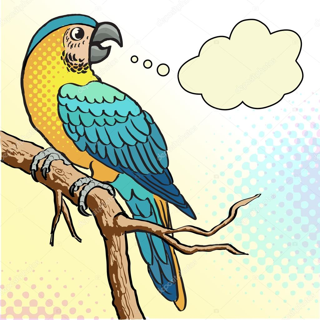 Colorful Parrot - Illustration