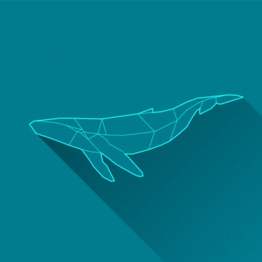 whale wireframe